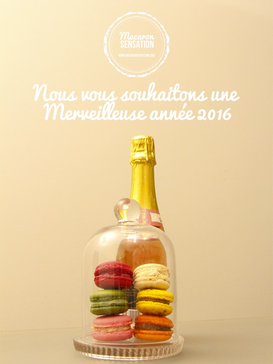 Happy new year from Macaron Sensation